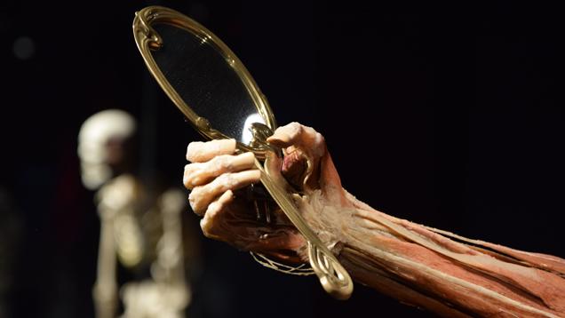 """Exponate im """"Menschenmuseum"""": Gunther von Hagens will den Besuchern den Spiegel vorhalten. Durch seine Plastinate sollen sie sich selbst kennenlernen"""