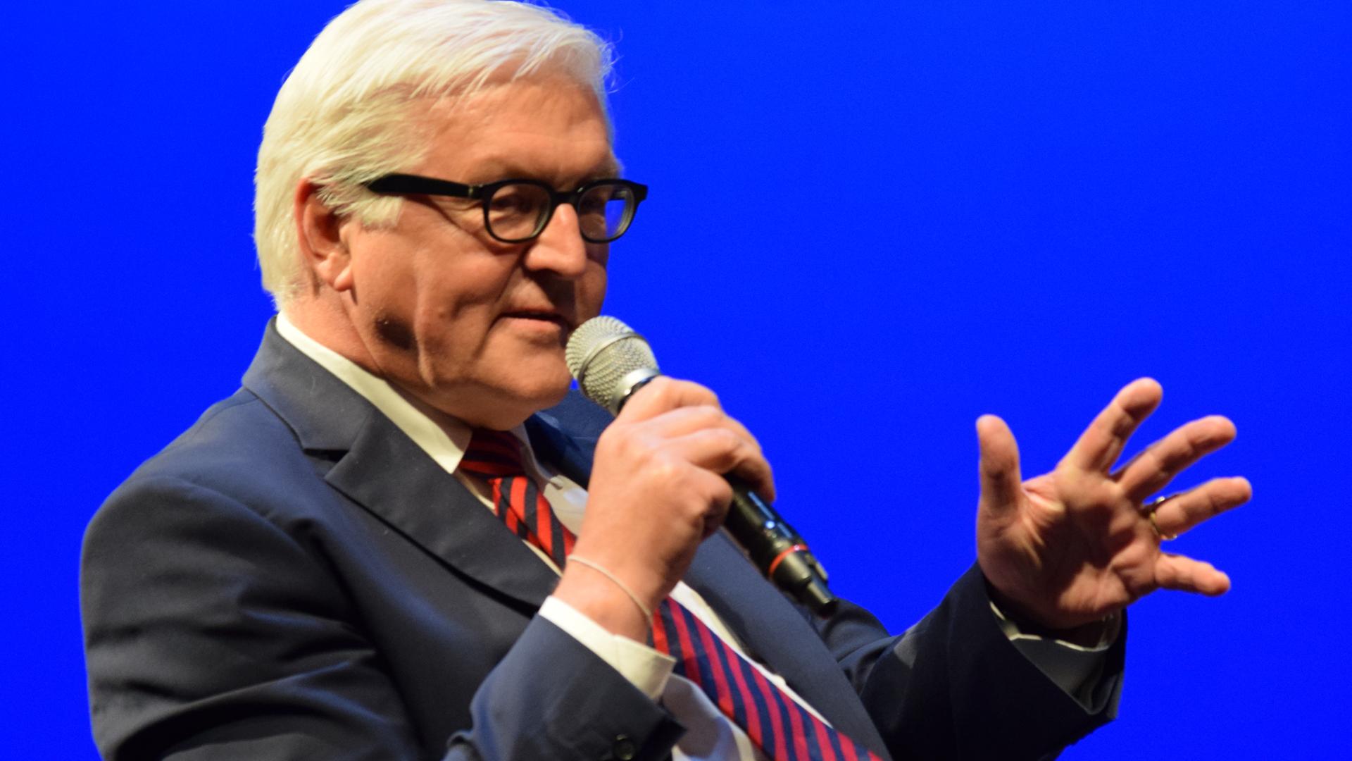 Bundespräsident Frank-Walter Steinmeier (Archivbild)