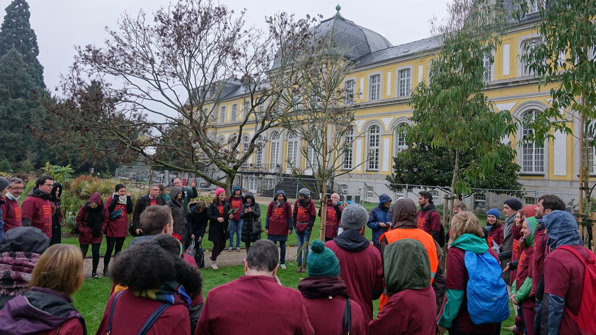 Im Botanischen Garten in Bonn hat sich ein Gebetskreis um die gestiftete australische Acacia pravissima gebildet