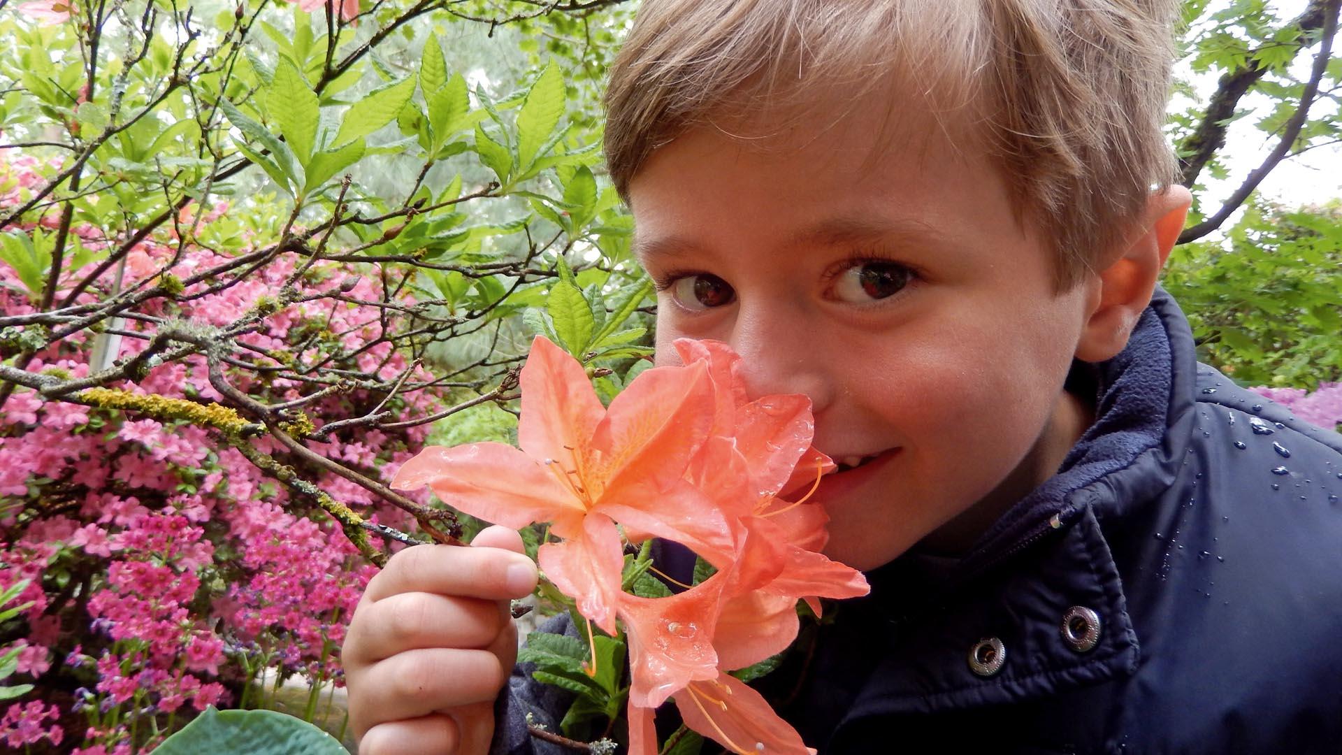 Tobias Roller liebte das Leben – und starb mit acht Jahren