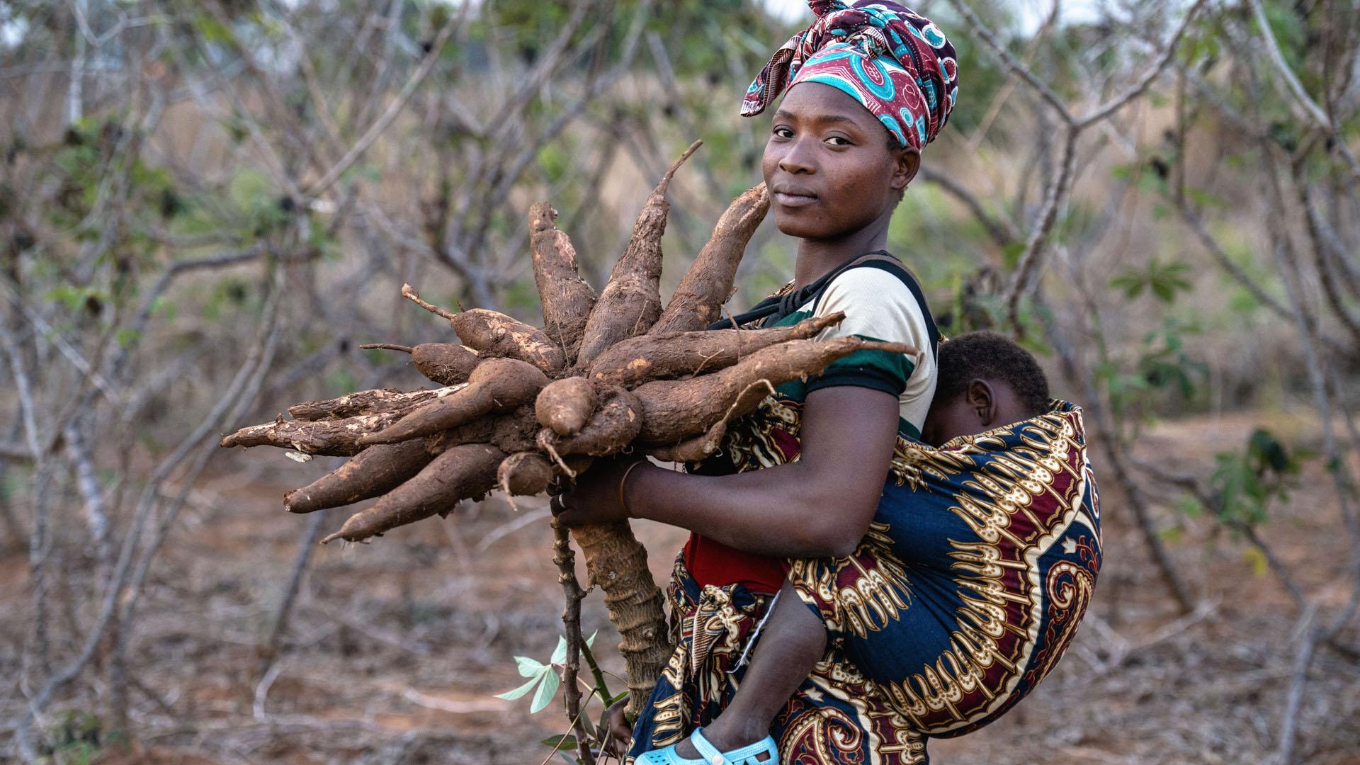 Die Firma Philafrica will afrikanische Lebensmittel verarbeiten und heimische Bauern unterstützen