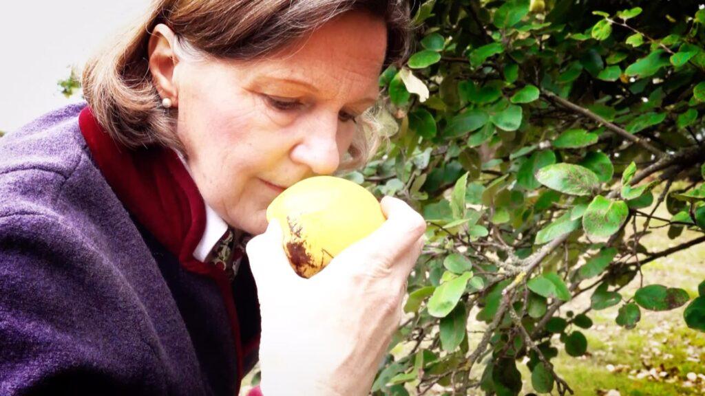"""Daisy Gräfin von Arnim ist die """"Apfelgräfin"""" in der Uckermark"""