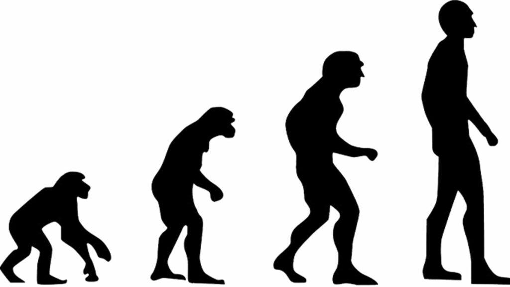 Die aktuellen wissenschaftlichen Erkenntnisse zur Entstehung der Menschheit sollten im Zuge eines Evolutionsweges präsentiert werden: Die Bürger einer kleinen Westerwald-Gemeinde haben das abgelehnt.