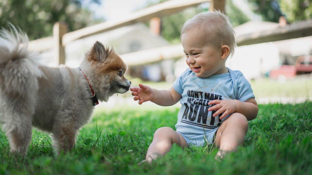 In einer neuen Reality-Show versucht der Sender RTL, Kinder mit Methoden aus der Hundeerziehung in die richtigen Bahnen zu lenken (Symbolbild)