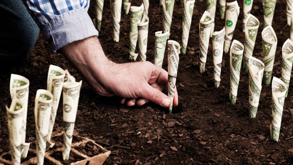 Wer würde das nicht gerne? Auf einfache und ökologische Weise sein Vermögen vermehren.